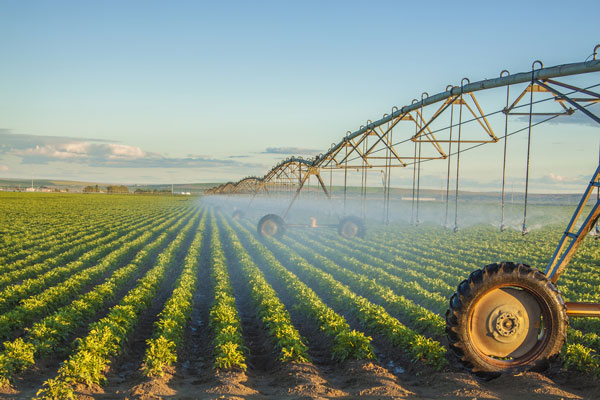 northwest hydro solutions commercial irrigation