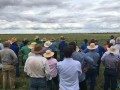 KPCA Field Day And Conference 2017