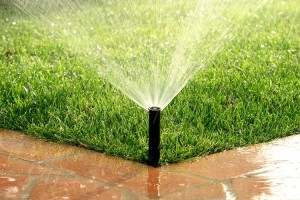 Home Reticulation Start-up Checklist